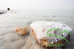Crystalic salt on a rock near beach in the Dead Sea, Jordan side.