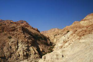 Оазис в пустыне Израиля