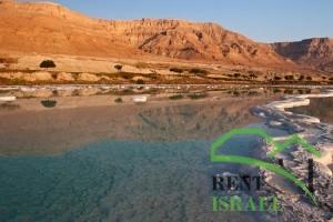 Посещение Мертвого моря